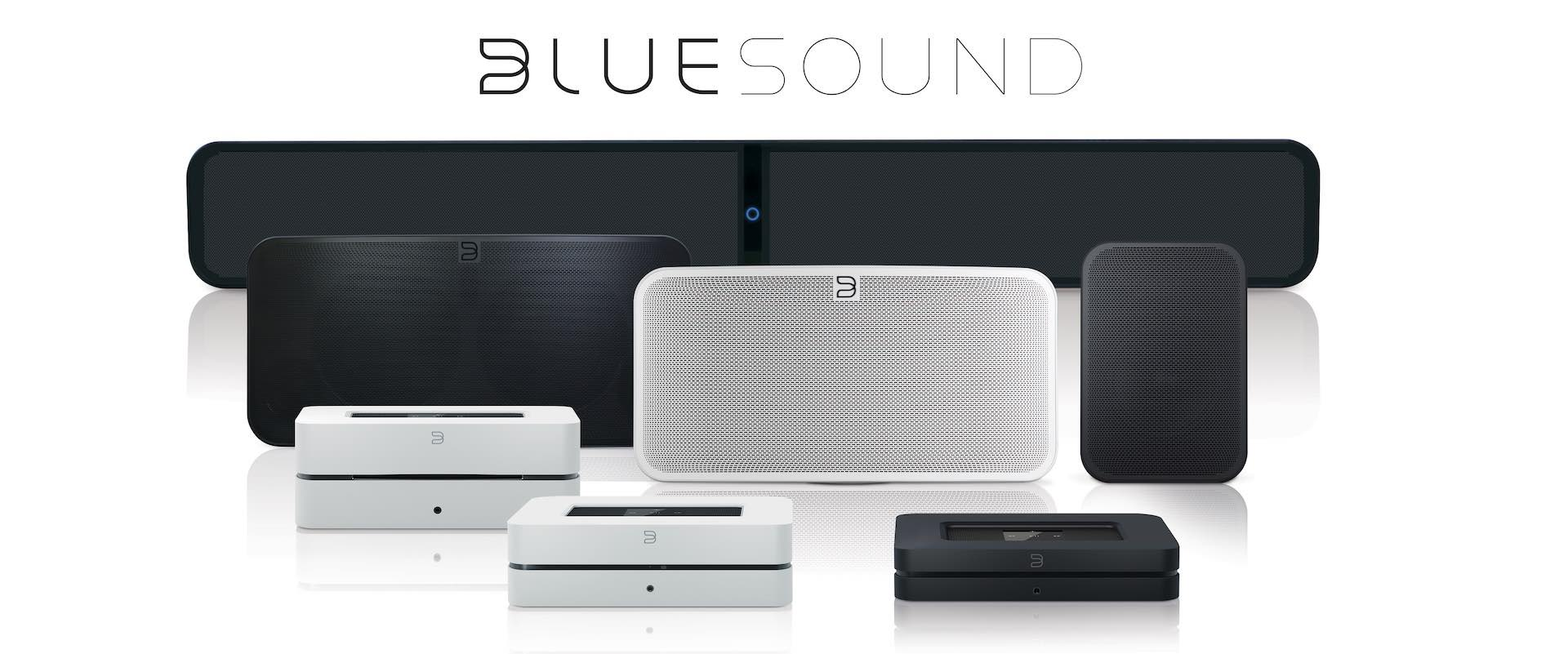 BLUESOUND 2i